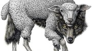 Islam is a wolf in sheeps clothing and it is high time that we started to notice the wolf rather than being distracted by the sheep.